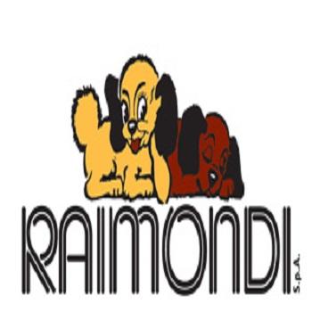 RAIMONDI Niveleer systeem